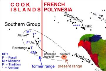 Historical distribution of the Red Lorikeet